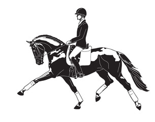 A logo of a dressage rider on a horse.