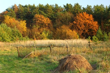 Autumn landscape with a haystack