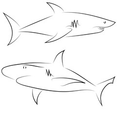 Black line sharks on white background. Hand drawn linear sketch. Vector graphic fishes. Animal illustration. Sketch style.