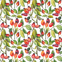 Seamless pattern with red rosehips berries and green leaves. Watercolor illustration on white background.