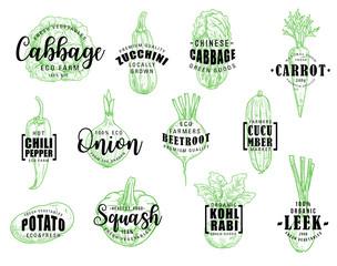 Organic natural vegetables, vector lettering