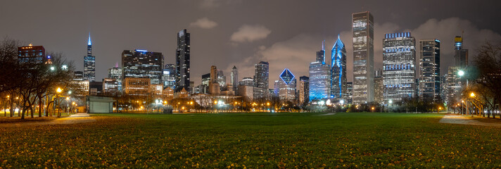 Downtown Chicago Skyscrappers At Night From Large Park