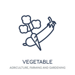 Vegetable icon. Vegetable linear symbol design from Agriculture, Farming and Gardening collection.
