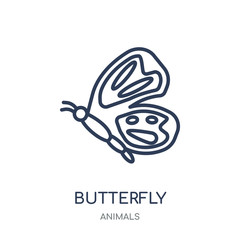 Butterfly icon. Butterfly linear symbol design from Animals collection.