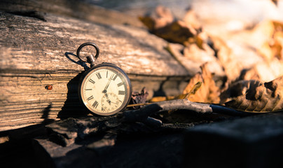 Time goes by: vintage watch outdoors; wood and leaves;
