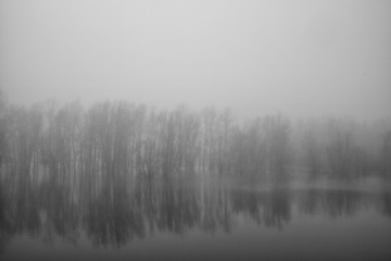 Black and white image of a cold misty winter morning in a partially flooded polder in The Netherlands.