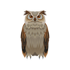 Great horned owl with brown plumage, front view. Large forest bird. Ornithology and fauna theme. Flat vector icon