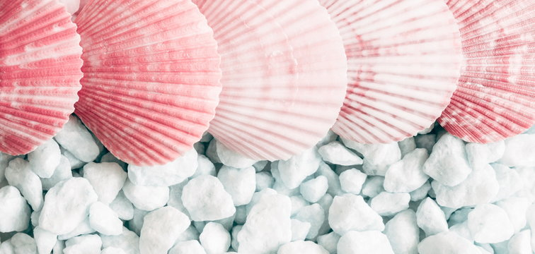 Sea shells, natural pink and blue stones as  background. Marine texture. Relax concept. Flat lay, top view