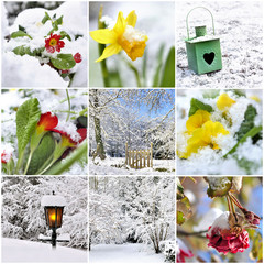 collage on the subject of winter garden