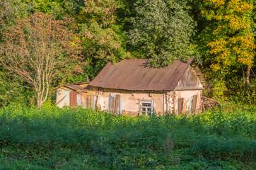 abandoned house among the trees