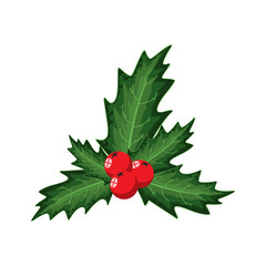 Holly berry. Vector cartoon Christmas decoration element isolated on a white background.
