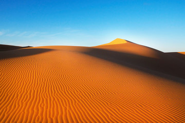 Sand dunes in the desert , warm dry sand under blue sky. Nature and landscapes of desert.