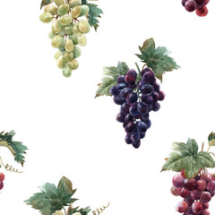 Fototapete - Watercolor grape pattern