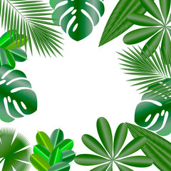 Decorative frame. Leaves of tropical plants. Isolated items. Monstera, ficus, palm tree, Schefflera.