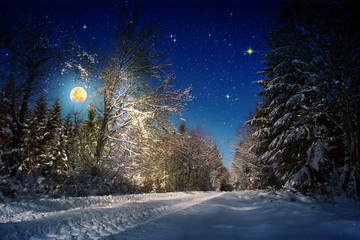 Christmas background with stars and big moon in winter forest.