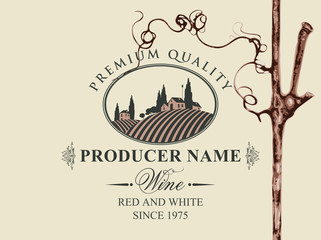 Vector label for red and white wine with rural landscape of vineyards and Italian village in oval frame and with grapevine in retro style