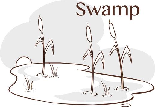 vector Illustration of a  Bog