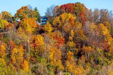 The Bluff in Fall