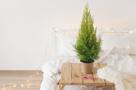 Little Christmas tree in a pot standing on a wooden tray on bed. New year tree, fluffy plaid, candy canes and christmas garland lights on white bedding. Home christmas decor. Cozy modern bedroom.