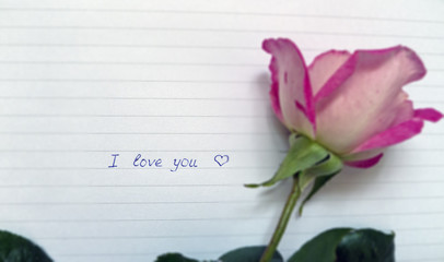 blue inscription by hand i love you on a piece of paper with stripes and pink three roses beside