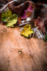Autumn background with plaid and leaves