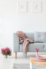 Vertical view of comfortable grey couch in bright living room interior with heather in pot and graphics in white frame on the wall, real photo