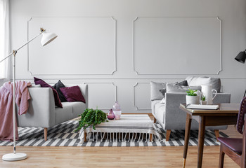 White lamp in stylish living room interior with two sofas with pillows and coffee table with green plant in pot, real photo with copy space on the empty wall