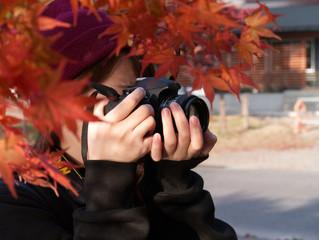 カメラ女子と秋の紅葉