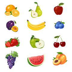 Set of colorful fruits icon. Vector illustration isolated on white.