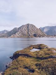 Green shore of rocky islands