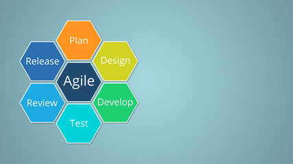 agile management concept