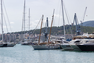 Yachts in the port of Palma