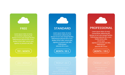 Three plan licence variation cards with reflection.  Vector infographic.