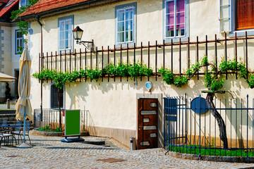 House with Zametovka grapevine Maribor Slovenia