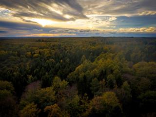 Herbstwald Schleswig-Holstein