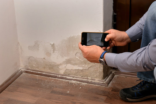 A man from an insurance company makes a photo of a damaged wall. Irregularities on the wall caused by saltpeter.