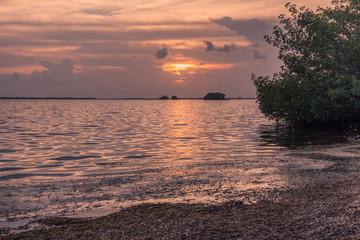 Pineland Monument Park, Pine Island, Fort Myers, Florida, USA - July 18, 2018: Idyllic sunset on an island in the Florida Keys