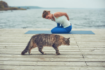 Beautiful young woman practices yoga asana on the wooden deck near the lake. Cat walking on the foreground
