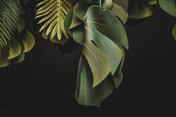Piante e foglie decorative Wall mural