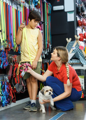 Preteen boy customer with mother and little dog choosing pet supplies