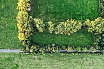 Luftbildaufnahme senkrecht von oben Gras Hecke Weg