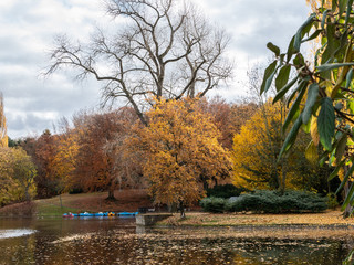 Autumnal impressions in the park