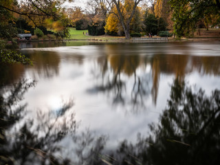 Autumnal impressions in the park with depth of field