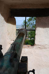 Old Canon at the Wartburg, Eisenach, Thuringia, Germany