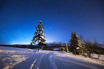 Winter night scenery