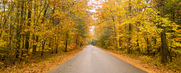 Rural Landscape Country Road Fall Autumn Season Leaves Changing Color