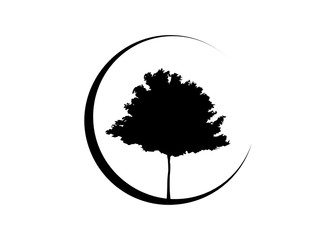 Vector black maple tree silhouette. Ecology Organic Farm Logo design  Vector isolated or white background