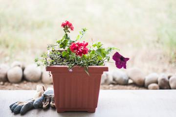 planter on porch