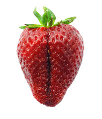 Strawberry concept sex isolated