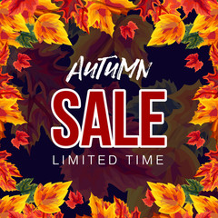 Stylish poster with colorful foliage and promotion of autumn sale for limited time